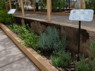 Jardim capa2 reduzida