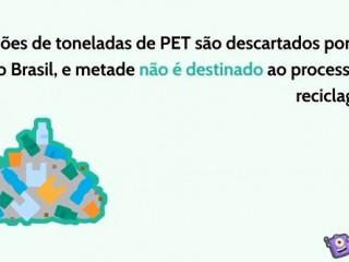 O plástico do tipo PET agora pode ser degradado com auxílio de uma bactéria!