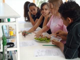 Clubistas em encontro sobre a osmose. (2010)