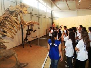 Viagem dos clubistas ao Museu de Zoologia em São Paulo. (2012)